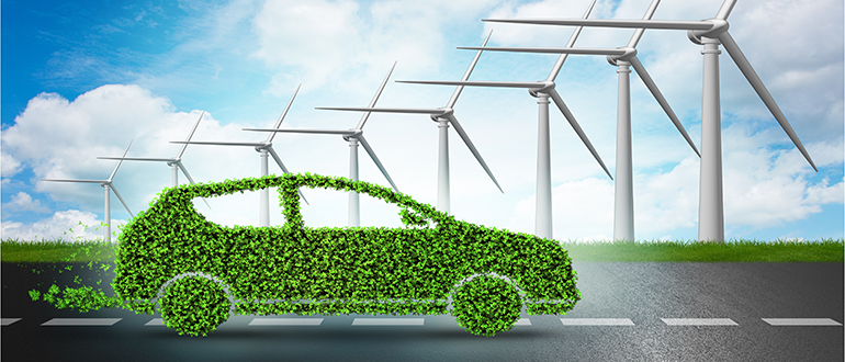 Sustainable Transportation in a future 100 % Renewable