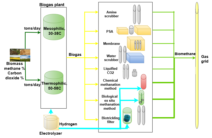 Biological upgrading of biogas with hydrogen - University of