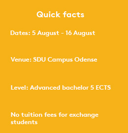 Engineering And Science Summer School - University of Southern