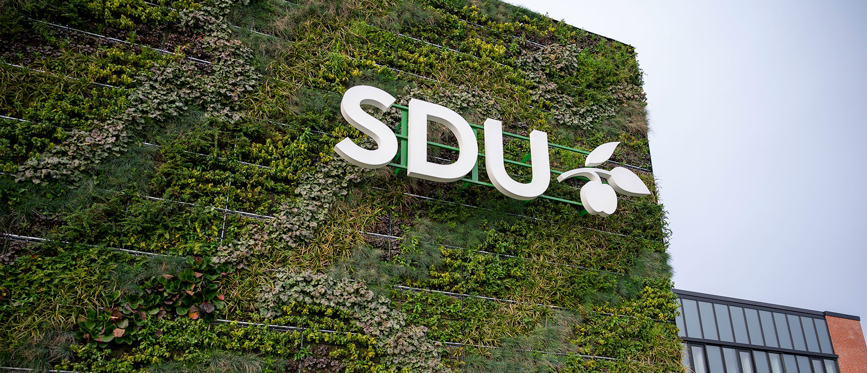 Green plant wall near the SDU entrance at Degnevej 14