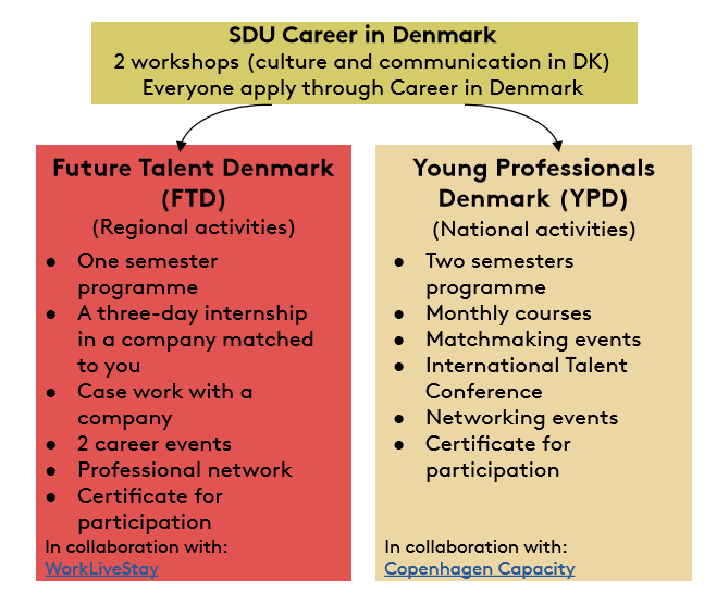 Career in Denmark