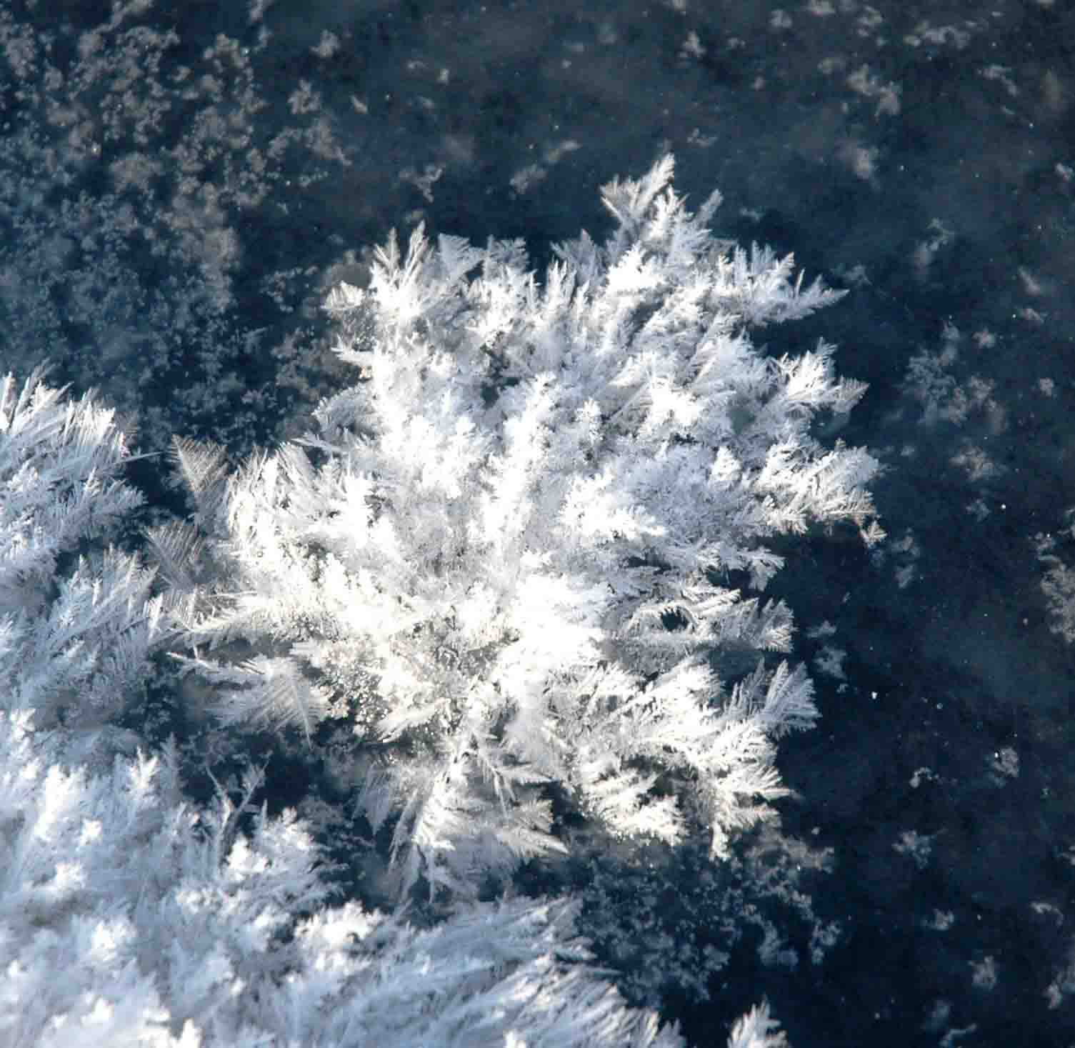 Claim Arctic sea ice helps remove CO2 from the atmosphere