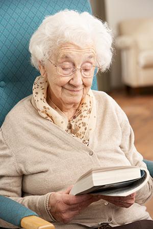 Ældre i litteraturen