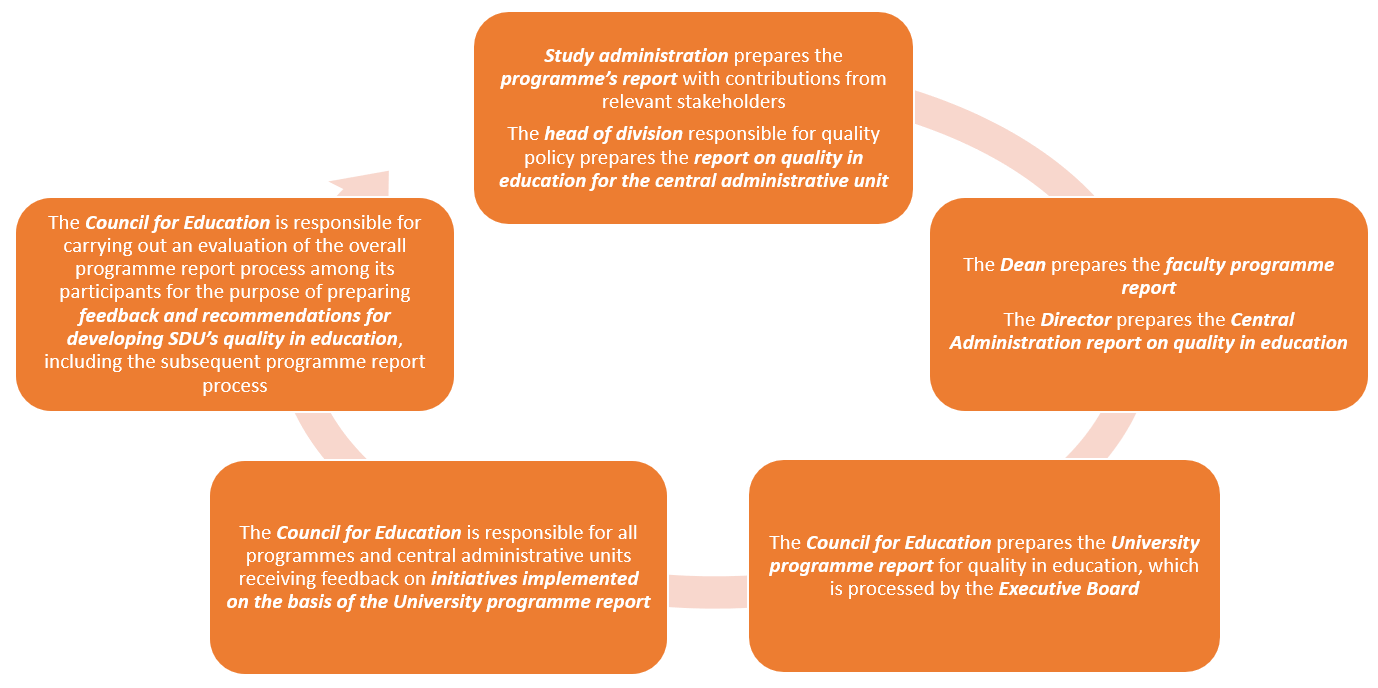 Process for preparing the Programme Report