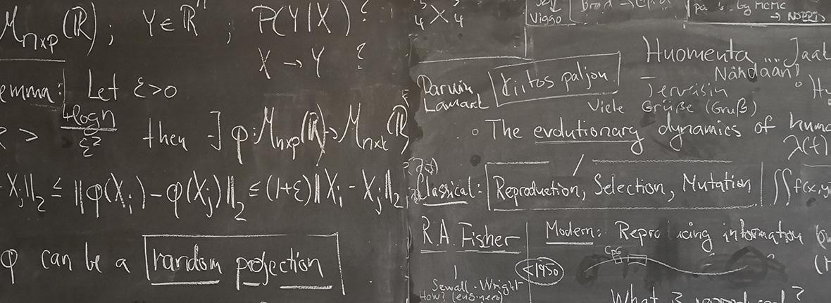 Dansk Selskab for Teoretisk Statistik