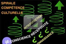 Den Kulturelle Kompetence Spiral
