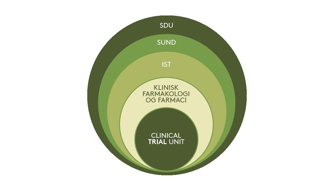 Organisations struktur